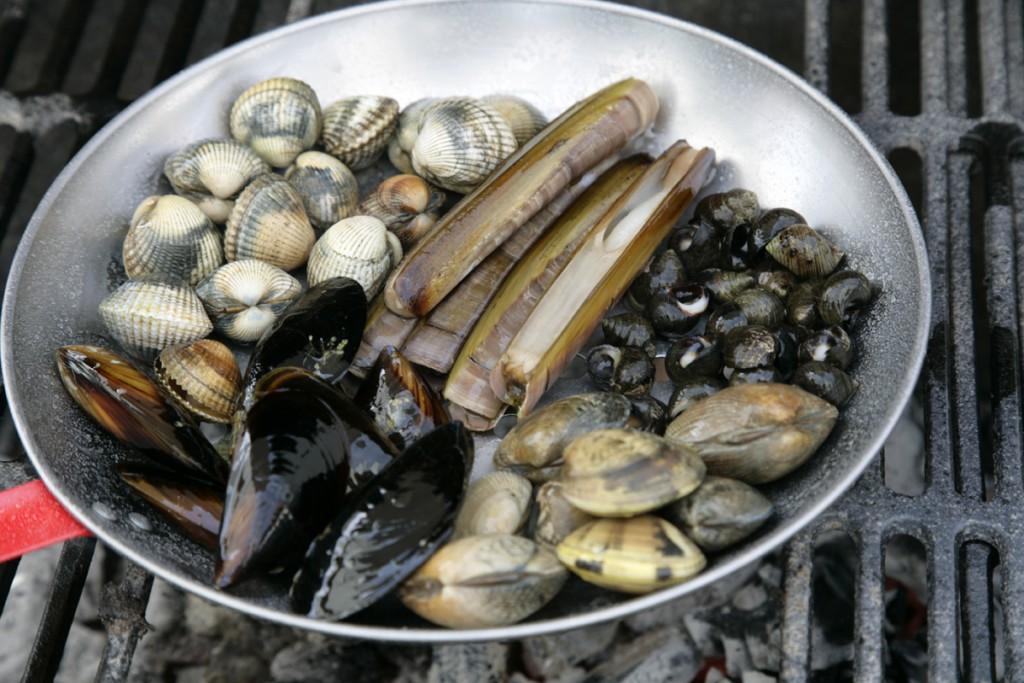 Barbacoa de pescado y marisco_ Mejillones, almejas, navajas y bígaros