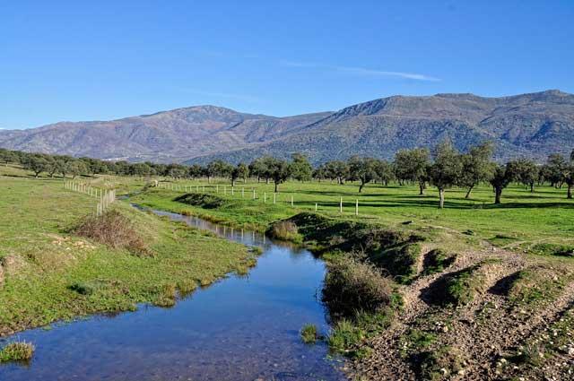 De ruta gastronómica por España: Extremadura