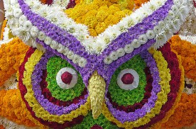 La Batalla de las Flores de Laredo, una fiesta colorida | HCMN