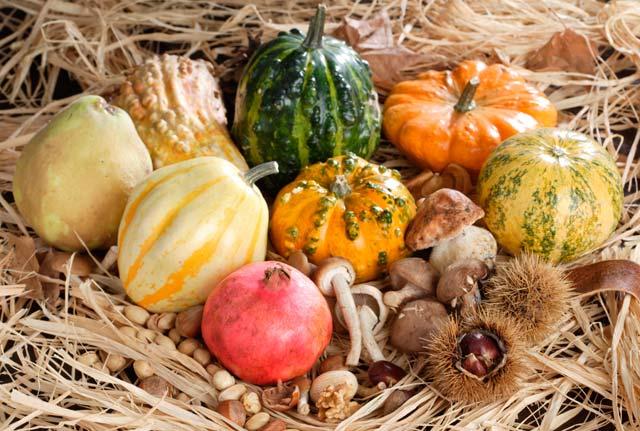 Menús de otoño con los mejores productos de temporada | HCMN