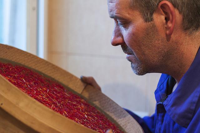 Fiesta de la Rosa del Azafrán | HCMN