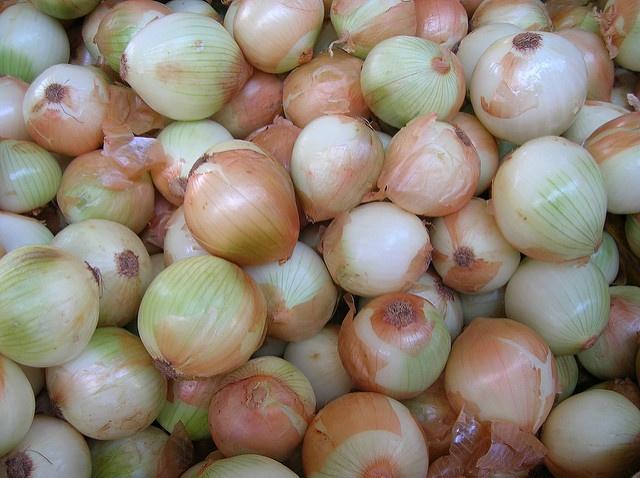 Conoce las diferencias entre Cebollas y Cebolletas | HCMN
