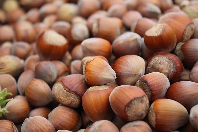 Leches vegetales y sus propiedades | HCMN