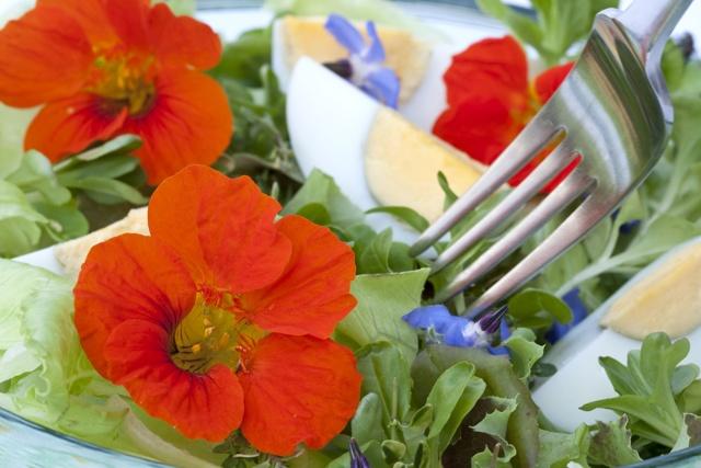 Qué son las flores comestibles | HCMN
