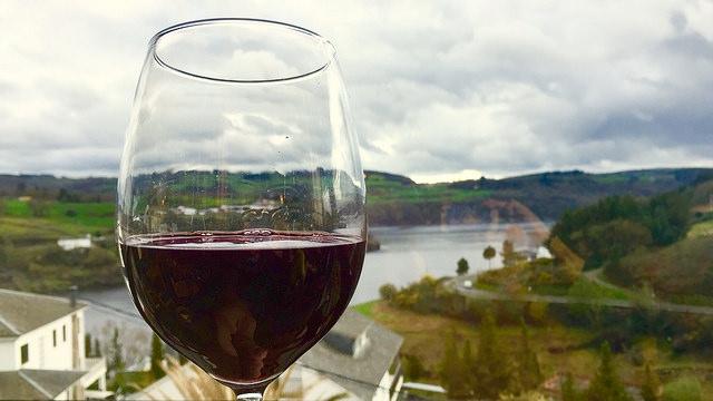 Diferencias y beneficios copa de vino blanco y tinto | HCMN