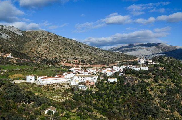 Fiesta del Mosto de Atajate, Málaga | HCMN