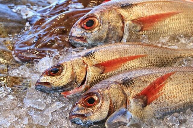 pescado_de_temporada