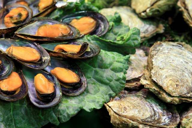 Mejillones, deliciosa fuente de hierro y otras propiedades | HCMN