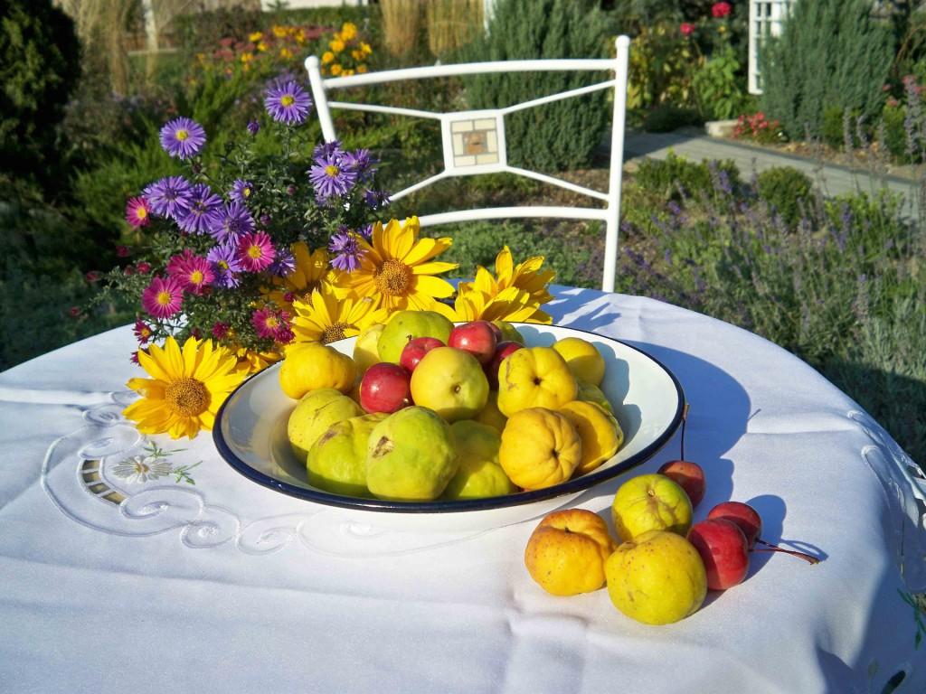 Membrillo, el dulce fruto de la diosa Afrodita | HCMN