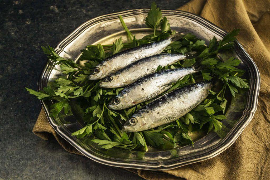 Valoremos la sardina, el pescado azul más asequible | HCMN