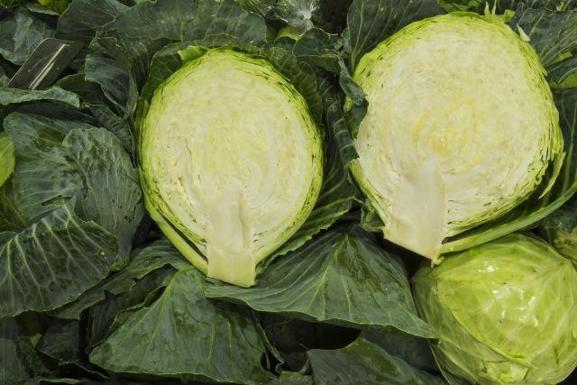 El repollo, verdura milagrosa desde tiempos romanos | HCMN