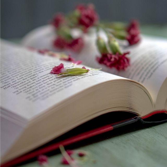 Día Internacional del Libro | HCMN